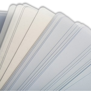 Plastic Pry Cards - Pack of 100
